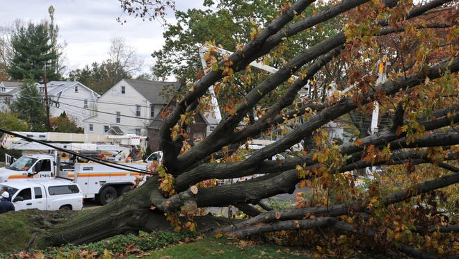 PSE&G crews work on a downed tree after superstorm Sandy.
