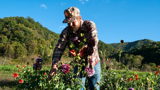 It's not all vegetables and farm animals on ASAP's Farm Tour. Find u-pick flowers at Lady Luck's Flower Farm.