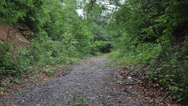 An unfinished road and uncleared building sites characterizes much of the land at the center of tax value appeal.