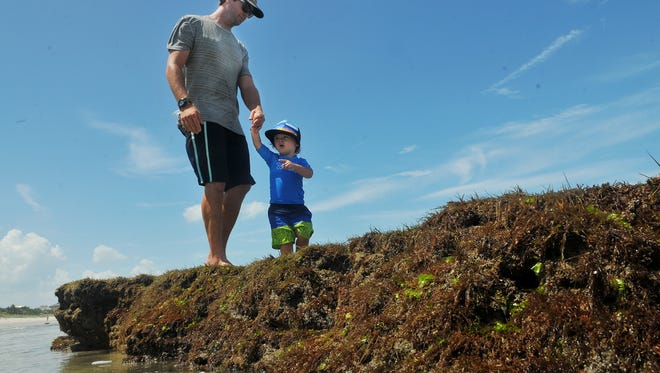 T.J. Gaudy of Satellite Beach and his son, Tripp Gaudy, enjoy the tide pools and rocks along the shoreline near Shell Street in Satellite Beach.