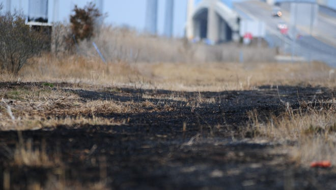 Patches of blackened earth could be scene for a few hundred yards in between the Indian River Inlet Bridge and the Villas at Beach Cove on Tuesday, March 6.