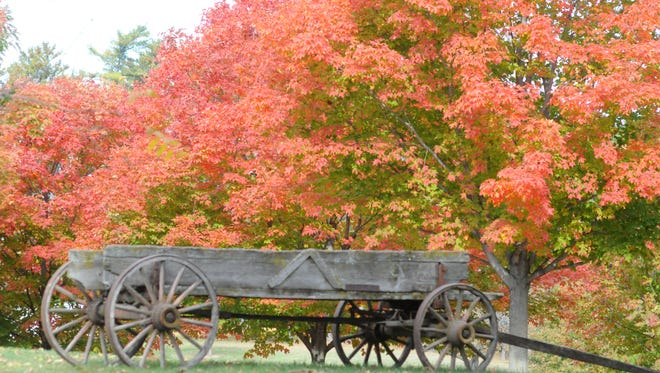 Fall colors at Pinecrest Historical Village,