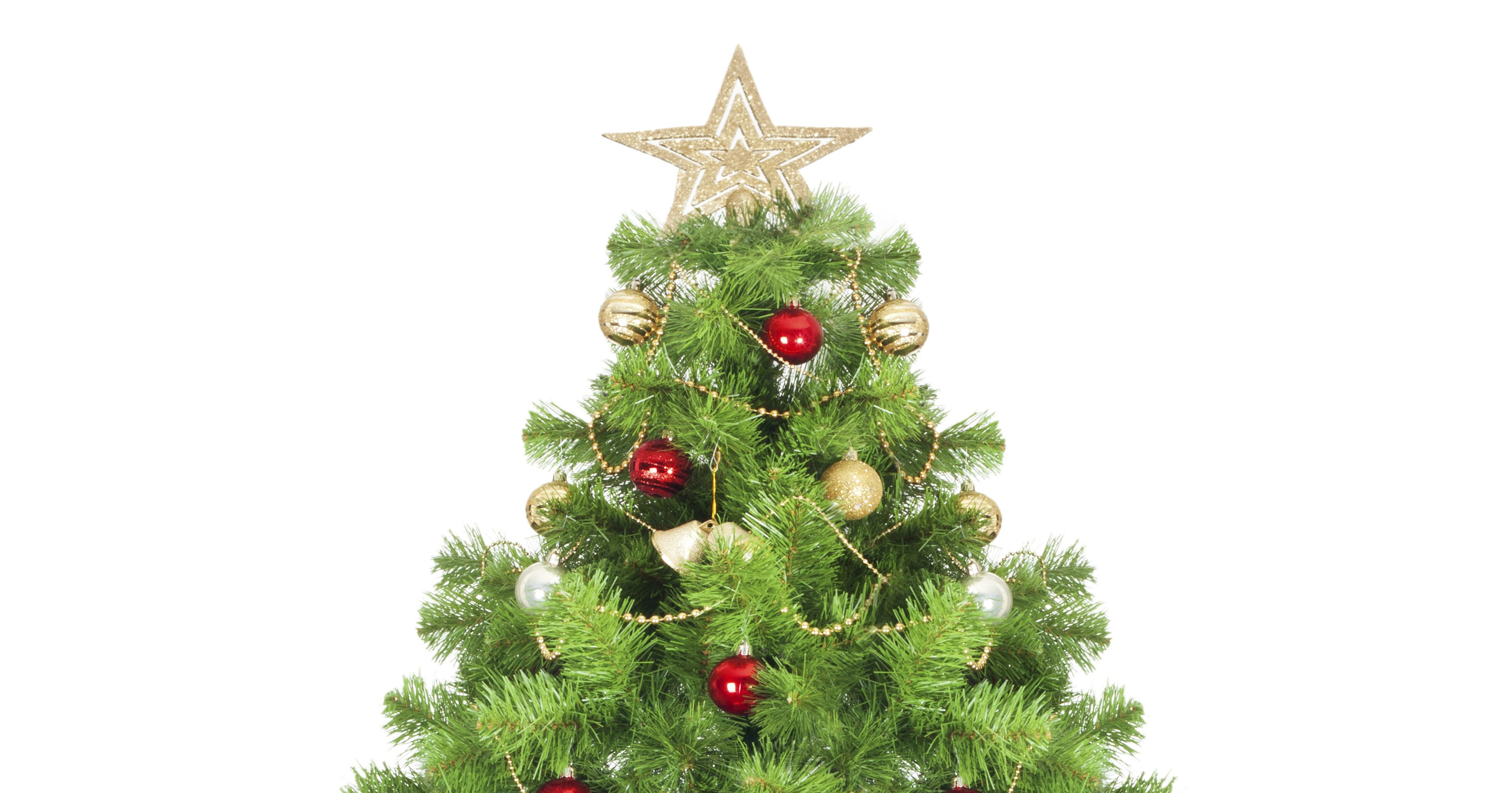 Don\'t overpay for your Christmas tree this year