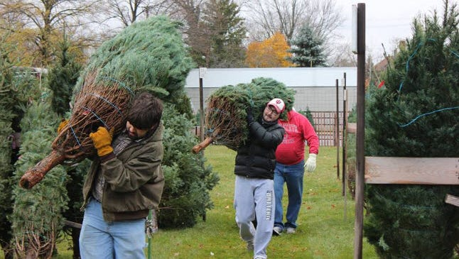 Y-Men members help set up the tree lot for the 2016 sales.