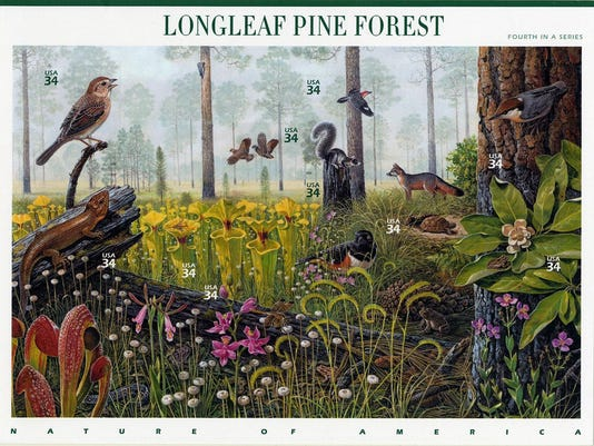 Longleaf-Forest-stamps_200ppi