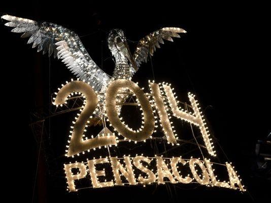 635554397624910337-pelican