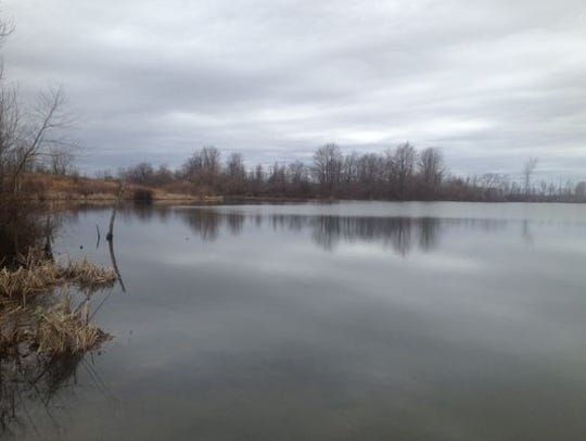 Province Pond in northern Henry County, where the body