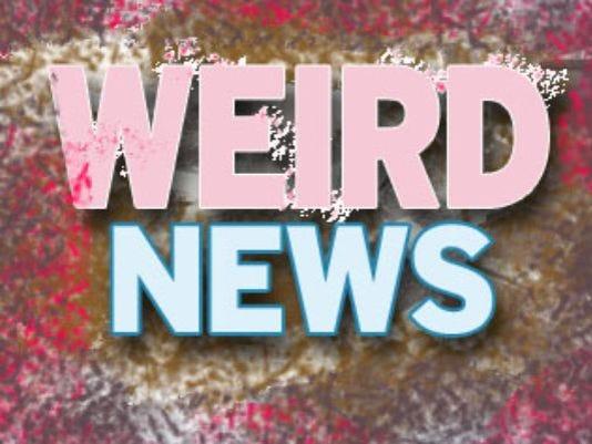 635814885656432760-WeirdNews