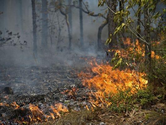635905283667192416-1394549456000-wildfire.jpg