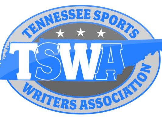 2015-16 TSWA all-state boys basketball teams