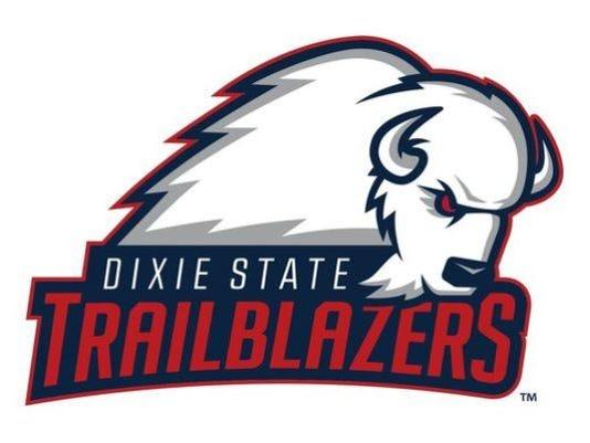 DSU-logo.jpeg