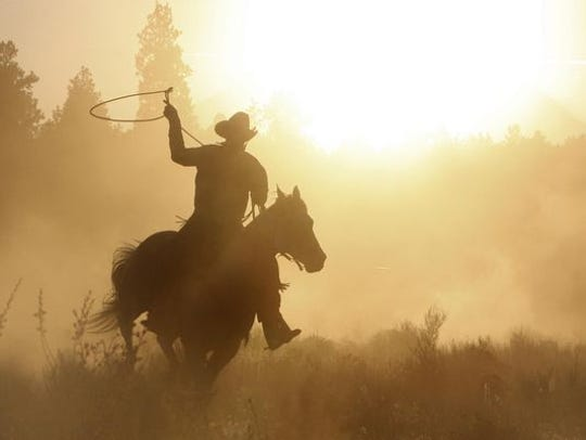 Cowboy roping on his horse silhouette.