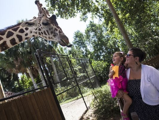 Enter to win four tickets to the Naples Zoo. Enter hourly from 3/6-3/31.