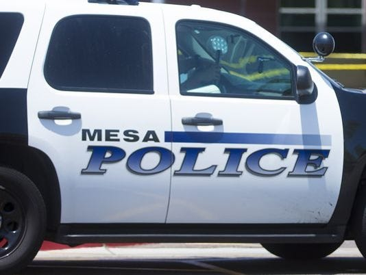 Mesa police vehicle