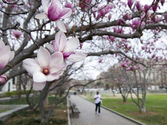 636257042853197695-636243158963080771-AP-Early-Spring.jpg