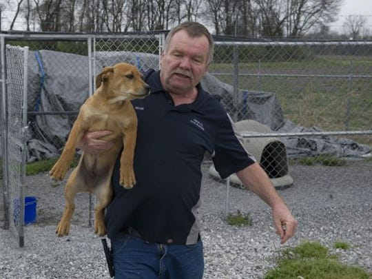 "After spending the day in the outside run, a Labrador-mix pup is moved into the Union County Dog Pound by Dog Warden Richie Jones Tuesday afternoon. ""We've gotta do it seven days a week,"" Jones said of the animals' care. ""100 degrees or 10 degrees. They've gotta eat and poop."""