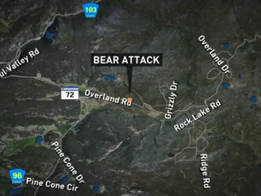 636352133080133625-Bear-attack.png