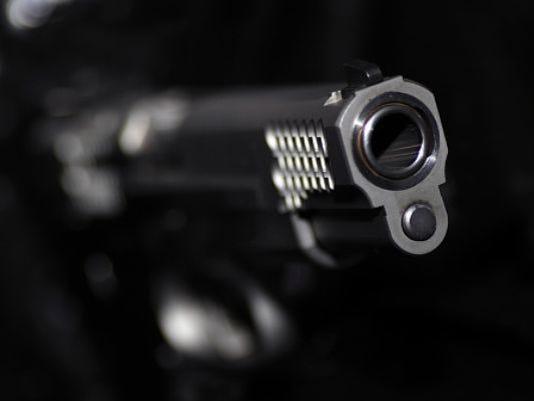 1-gunstock.jpg