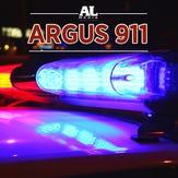 Man, 21, killed in Harding County crash