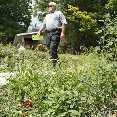 Code enforcement officer Jeff Ray passes tall weeds
