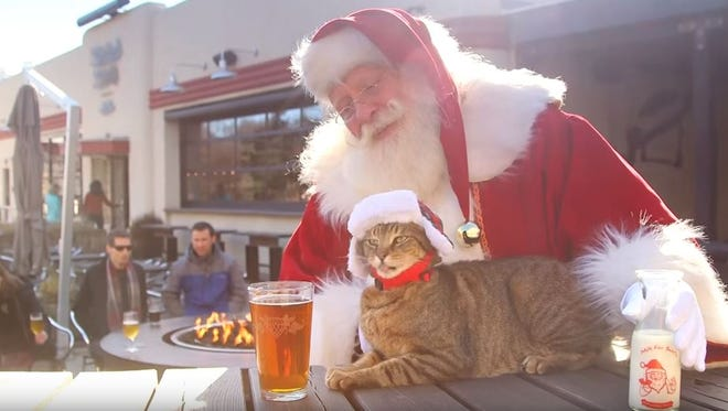 Last year, the Asheville Convention and Visitors Bureau released this video of cute cats in iconic locations.