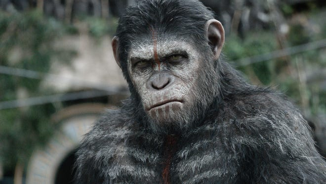 "Caesar (Andy Serkis) ponders what to do with the rest of mankind in ""Dawn of the Planet of the Apes."""