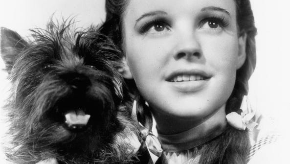 """Judy Garland as Dorothy in the 1939 MGM movie """"The"""