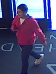 Surveillance photo shows a man suspected of stealing a puppy on June 7 from Arrowhead Towne Center Mall in Glendale, according to the Glendale Police Department.