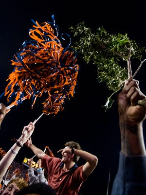 Auburn fans tearing out the shrubs after beating Alabama in the Iron Bowl in Auburn, Ala. on Saturday November 25, 2017. (Mickey Welsh / Montgomery Advertiser)