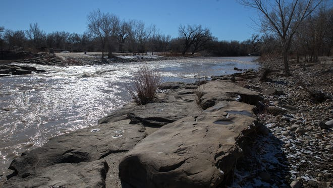 A stretch of the Animas River through Berg Park is the target of a proposed restoration project that the Farmington City Council will consider at its meeting Tuesday.