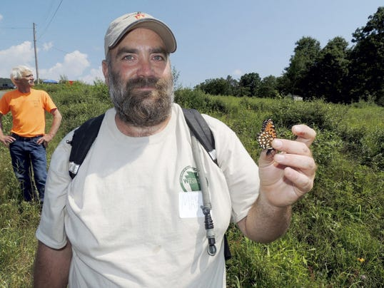 file photo -- Lebanon Daily News In this 2014 file photo, Mark Swartz, a wildlife biologist for the state Department of Military and Veterans Affairs, displays a Regal Fritillary butterfly during a tour last summer at Fort Indiantown Gap. Tours of the rare Regal Fritillary butterfly will take place several days this July.
