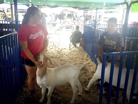 Madison Hetrick of Grantville, holds on to her goat, Tammy, and explains the process of showing animals. Madison was the grand champion goat showman at the Lebanon Area Fair. With her is brother, Mitch, who earned a reserve champion honor for his breeding goat.