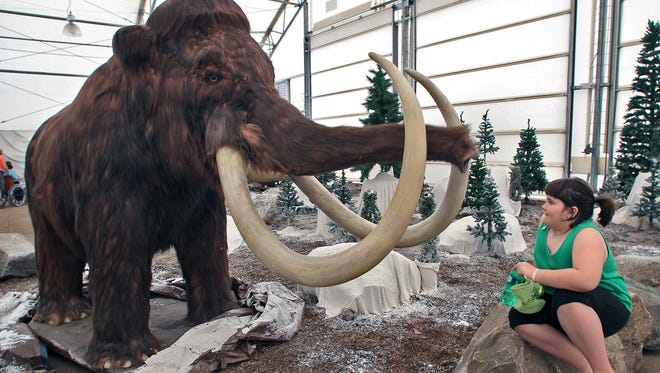 Teeth from a woolly mammoth, shown here in a 2012 exhibit at an Iowa zoo, were first found in South Carolina in 1725.