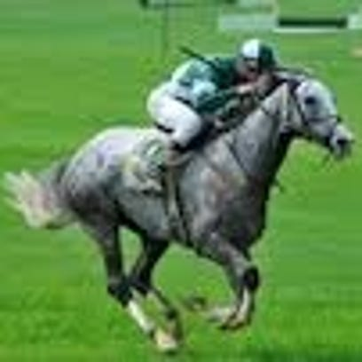 Middleburg Point to Point