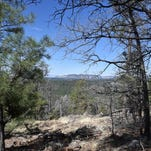 Arizona hike: Crystal Point Trail, Munds Park