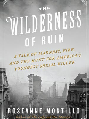 'The Wilderness of Ruin' by Roseanne Montillo