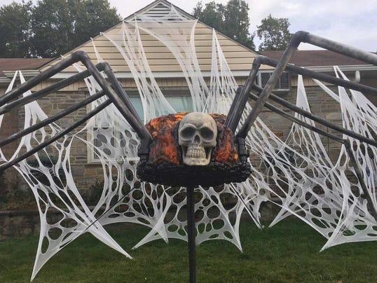 636434177929348481-spider-am-bestens.jpg