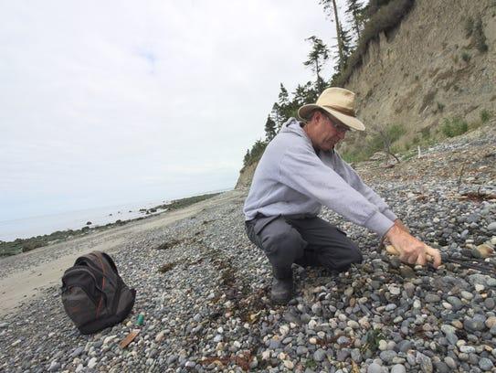 Tim Blair rakes a rock bed on Glass Beach as he looks