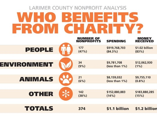 A breakdown of county nonprofit finances by category.