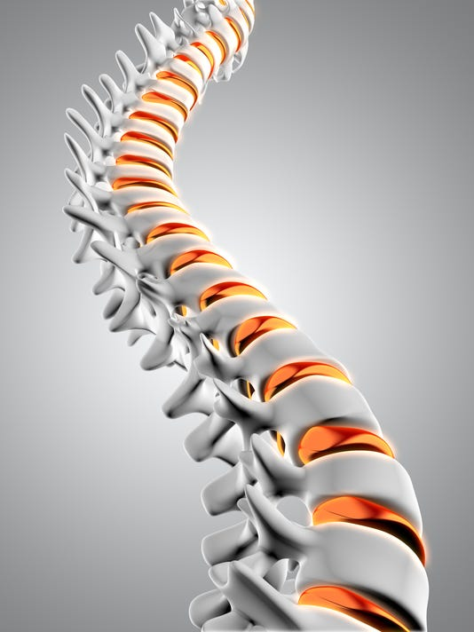 3D spine with discs highlighted
