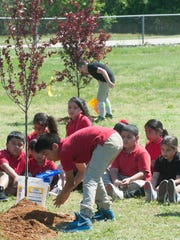 Fourth grade student, Jesus Quintanev plants a tree