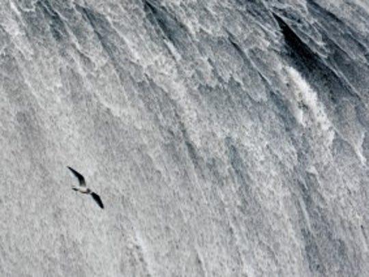 seagull dam 2