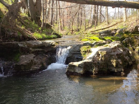 Toon Creek runs through the Water Leaf community and will have preserved green space around it.