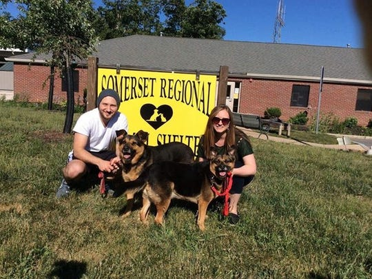Hanzel and Gretal arrived at Somerset Regional Animal Shelter in January after being removed, by the Humane Society of the United States, from a hoarding situation in Ohio.