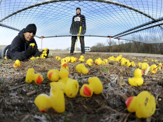 Kais Manoubi, of Emmitsburg, Md., crawls in the mud to find two ducks that have numbers that can equal 24 on Nov. 30. Manoubi and his wife Laurin, background, were competing in the Cerebrun race, which mixed a 5- to 7-mile run with physical and mental challenges at Rexroth Farm in Manchester Township. (Jason Plotkin -- Daily Record/Sunday News)