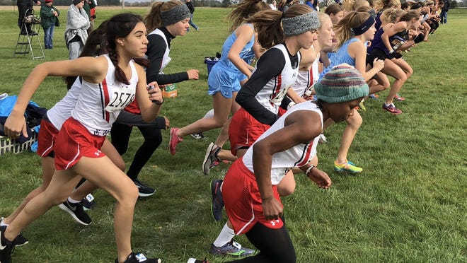 Starting lines for this year's cross country meets will look different than the mass starting line did at last year's NIC-10 girls meet at Jefferon High School in Rockford.