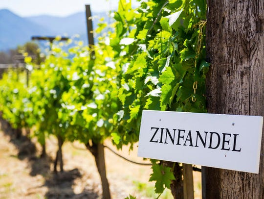 Some authentic old vine makers take pains to meticulously document each vine in their zin blocks.