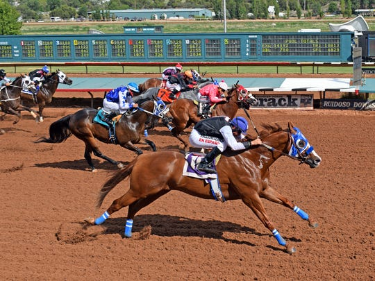 Johnny Trotter's Bodacious Eagle (#10) has been a warrior racing against the best horses of his generation.