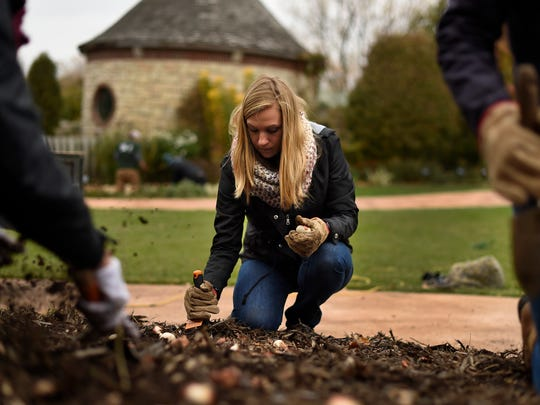 Rachel England, a sophomore at UW-Green Bay, helps plant thousands of spring bulbs Friday as part of UWGB's Make A Difference Day activities at the Green Bay Botanical Garden.