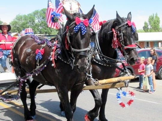 Even the equines were in a patriotic mood.
